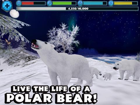 Polar Bear Simulator screenshot 6