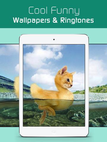 Funny Wallpapers HD,Keep Calm Posters & Meme Pics for iPhone,iPad & iPod screenshot 6
