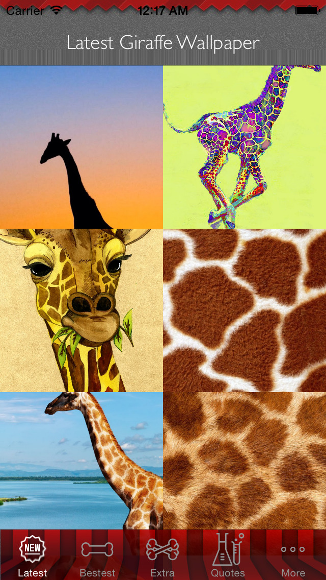 Best HD Giraffe Art Wallpapers for iOS 8 Backgrounds: Animal Theme Pictures Collection screenshot 1