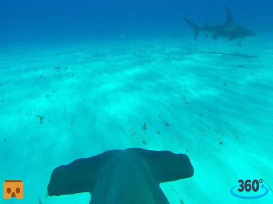 VR Hungry Shark Cage with Google Cardboard screenshot 4