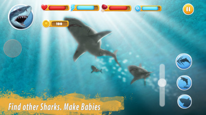 Shark Family Simulator Full screenshot 2