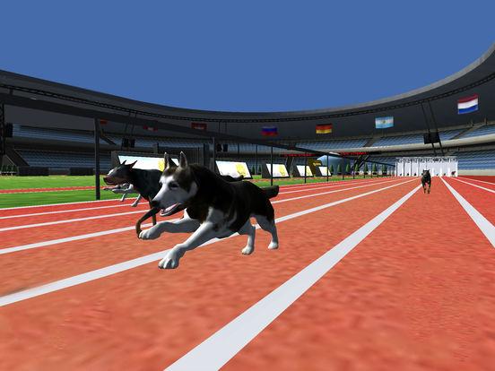 Super Dog Racing Champions screenshot 7