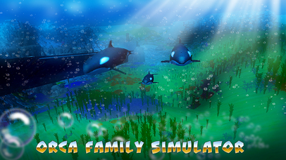 Orca Family Simulator screenshot 1