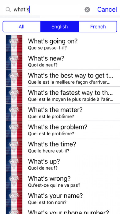 French Phrases Offline screenshot 2