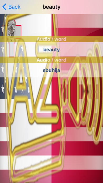 Maltese Dictionary GoldEdition screenshot 5