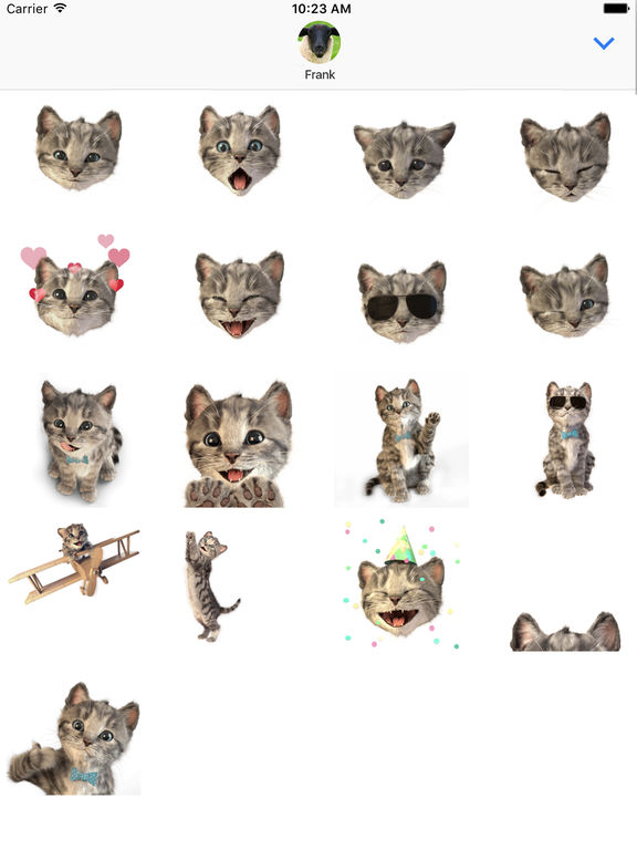 Little Kitten Stickers screenshot 5