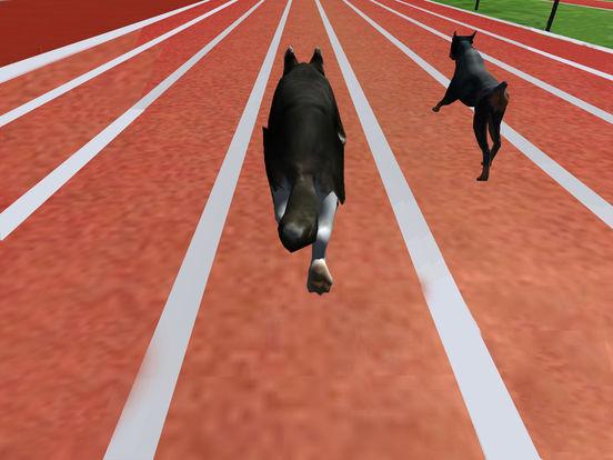 Ultimate Dog Racing : Virtual Stray Simulator 2017 screenshot 8