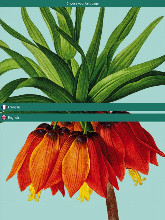 Pierre-Joseph Redouté, the power of flowers screenshot 6