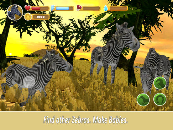 Zebra Family Simulator Full screenshot 6
