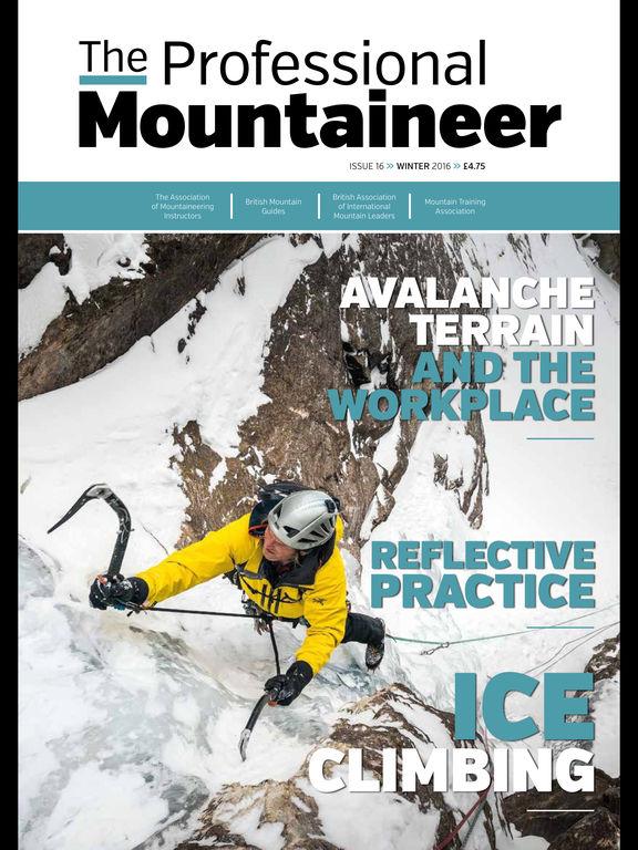 Professional Mountaineer screenshot 6