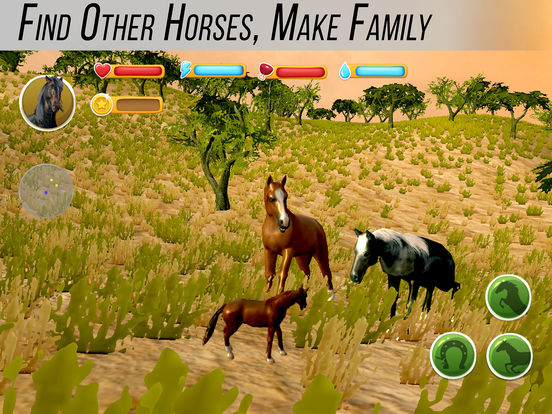 Arabian Horse Simulator screenshot 7