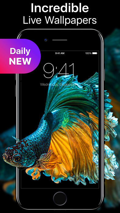 live wallpaper for iphone 6 live wallpapers and themes now on the app 17785