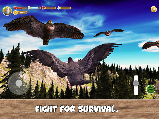 Wild Pigeon Simulator Full screenshot 8