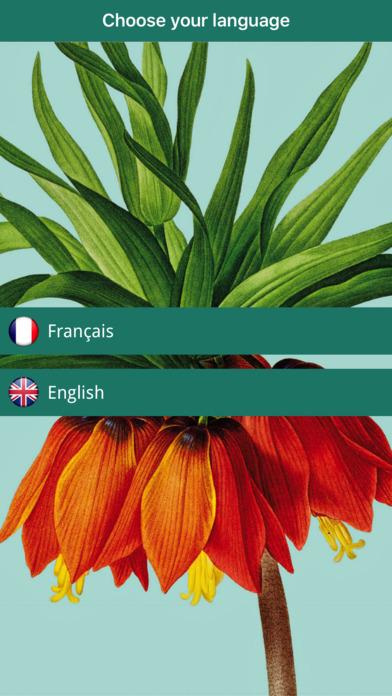 Pierre-Joseph Redouté, the power of flowers screenshot 1