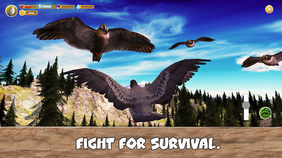 Wild Pigeon Simulator Full screenshot 4