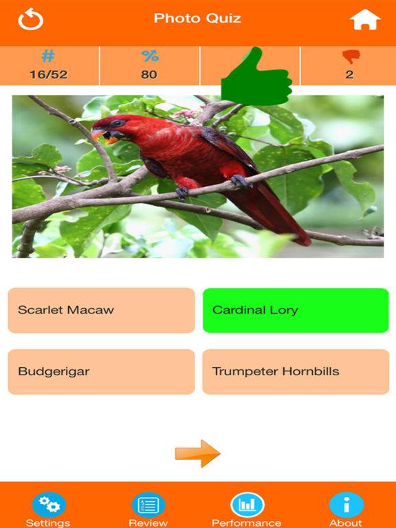 Animals : Wild Birds Quiz screenshot 7