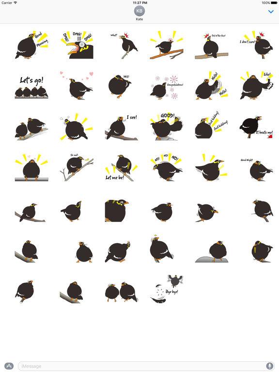 Grackle Bird Sticker screenshot 4