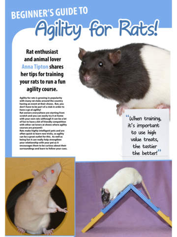 Life With Pets Magazine - The lifestyle pet magazine for all animal lovers screenshot 9