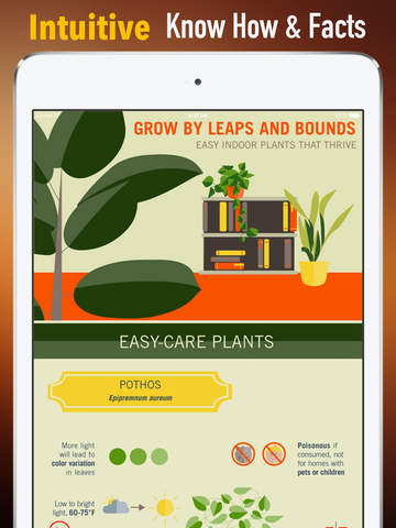 How to Grow Houseplants:Tips and Tutorial screenshot 6