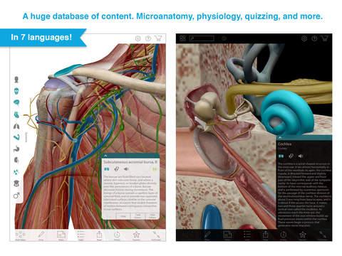 Human Anatomy Atlas 2020 screenshot 10