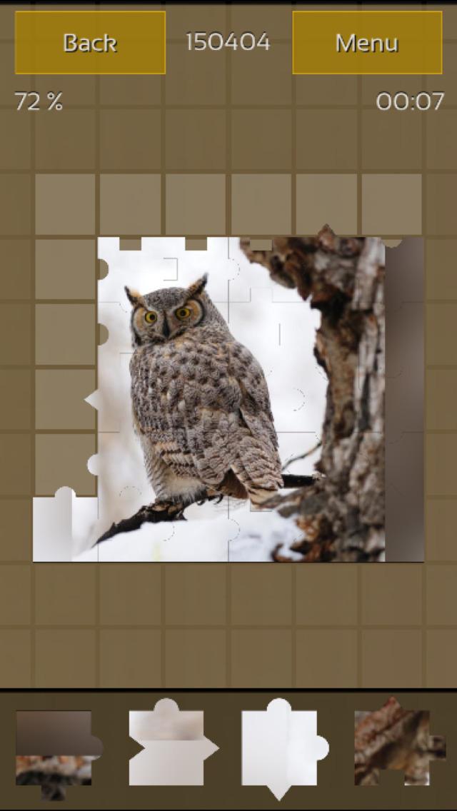Owls Great Puzzle screenshot 1