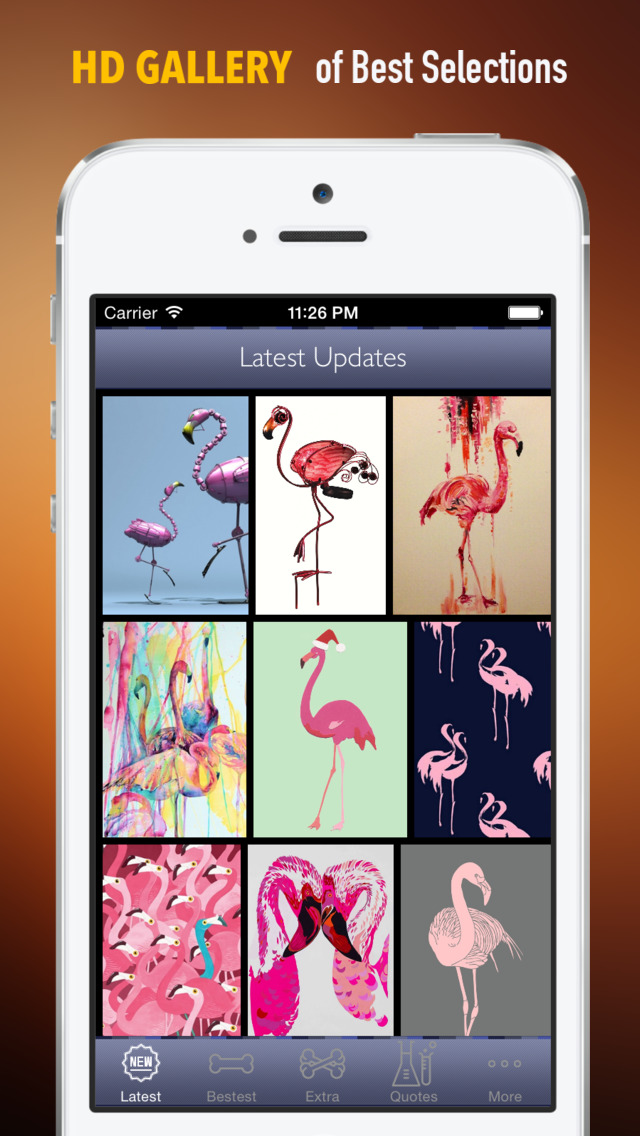 Flamingo Wallpapers HD: Quotes Backgrounds with Art Pictures screenshot 1