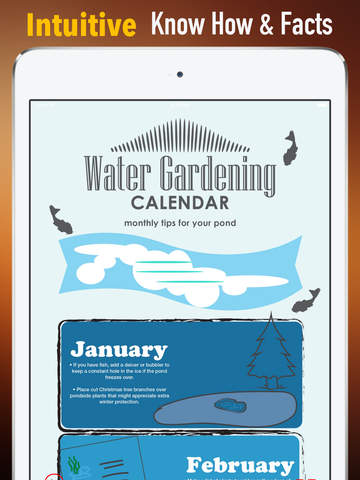 How to Care for Your Pond:Tips and Tutorial screenshot 6