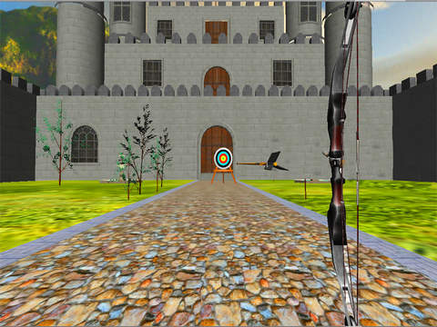 Archery Bow and Arrow Shooting screenshot 9