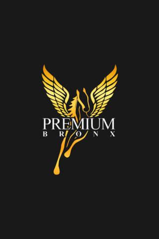 Premium Bronx Car Service - náhled
