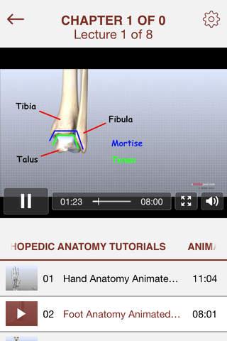 Full Docs for Anatomy - náhled