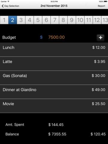 Budget Keeper Mobile - náhled