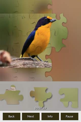 Puzzle Birds - náhled