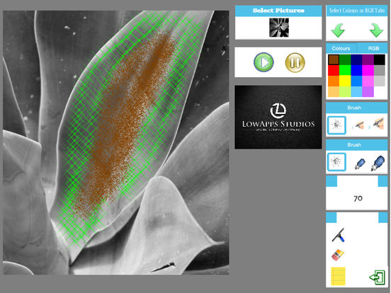 Tropical Fruit Airbrush - Coloring and Meditations screenshot 10