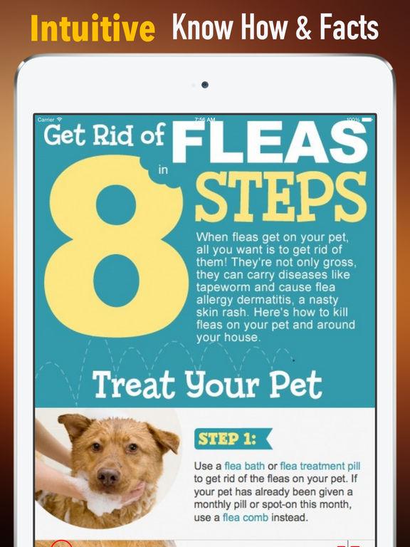 Flea Treatment for Pets:Medication & Treatments screenshot 6