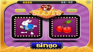 A Lucky Rabbit Slots Game - Vegas Wonderland Casino Games Free screenshot 2