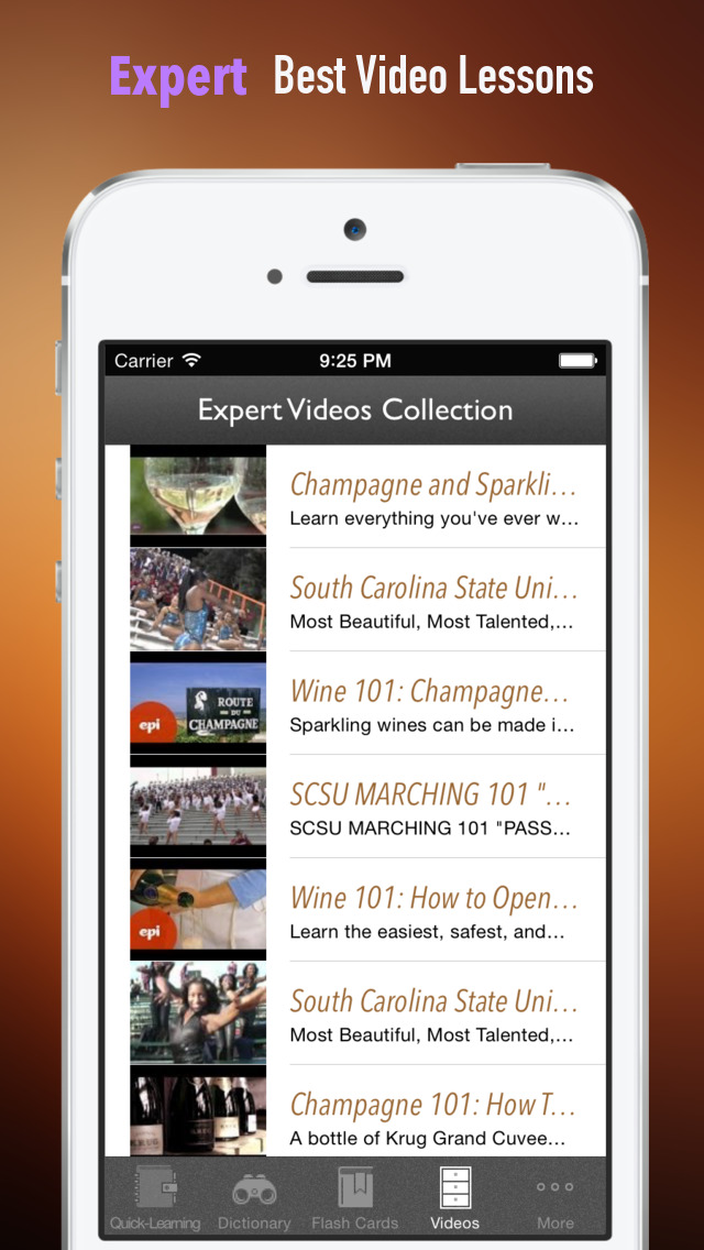 Champagne 101: Quick Study Reference with Video Lessons and Tasting Guide screenshot 5