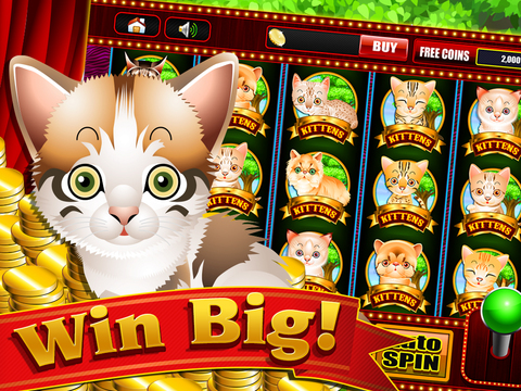 wintingo casino Casino