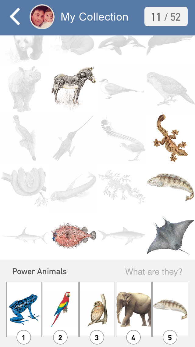 Animal Challenge! Free new quiz game where you identify