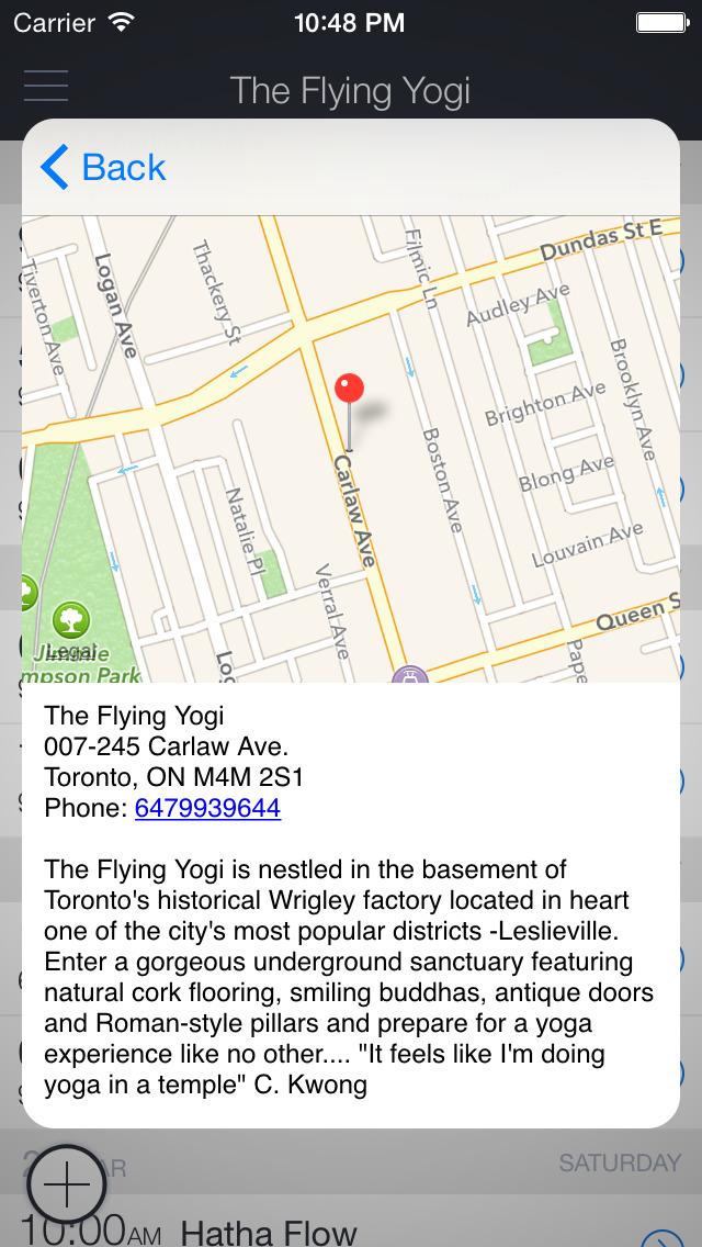 The Flying Yogi screenshot 3