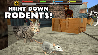 Stray Cat Simulator screenshot 3