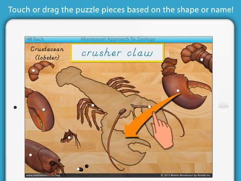 Parts of Invertebrate Animals screenshot 11