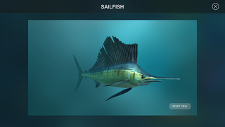 Amazing World OCEAN 3D screenshot 4
