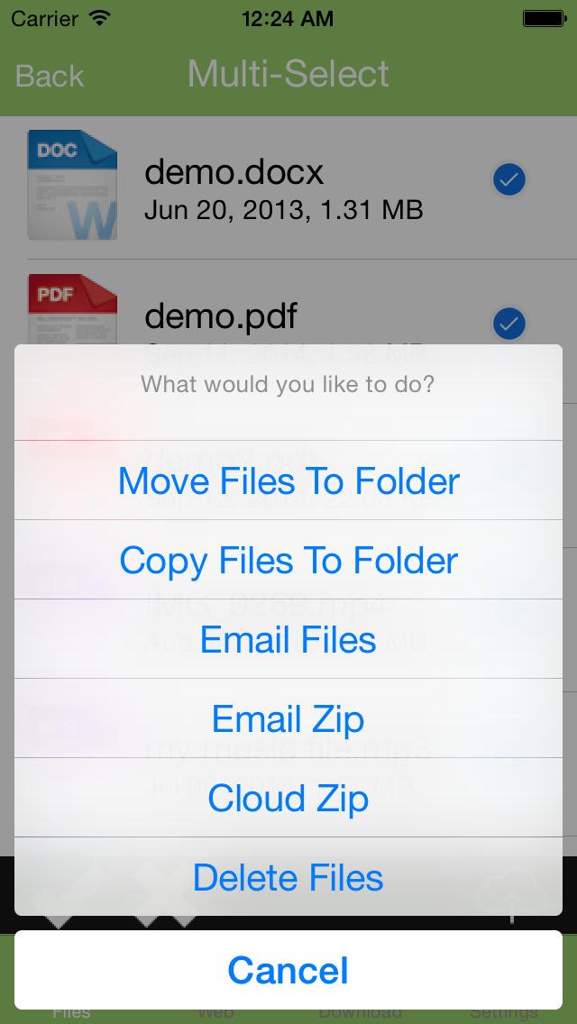 Downloader - File Manager, Downloader & Download Manager + PDF Reader screenshot 5
