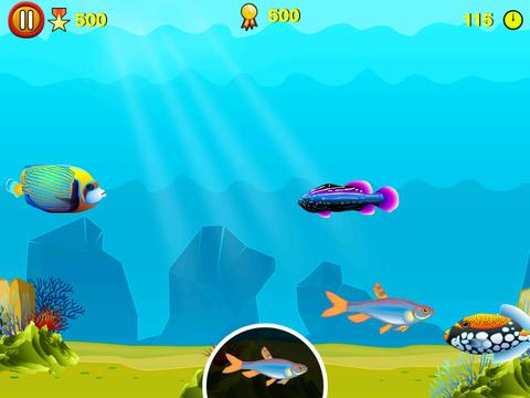 Find D Fish screenshot 6
