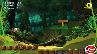 Amazon Exploration screenshot 2