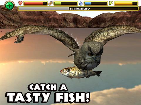 Owl Simulator screenshot 7