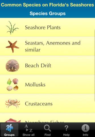 Guide to Florida Seashore Wildlife - náhled