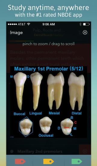 NBDE I Dental Boards Mastery screenshot 3