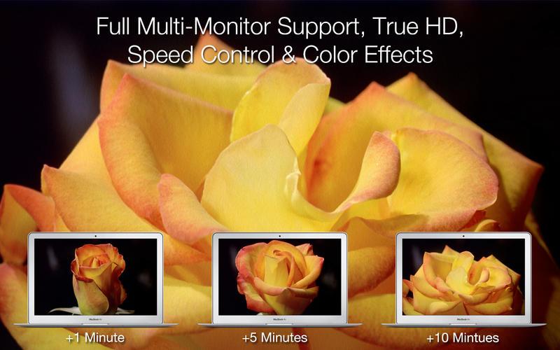 Magic Flowers - Living Wallpaper & Screen Saver screenshot 3
