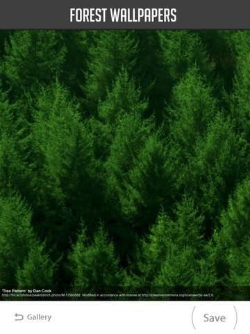 Forest Wallpapers screenshot 8